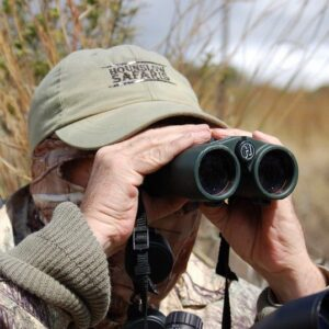 A buyer's guide for ideal whale and ocean-watching binoculars