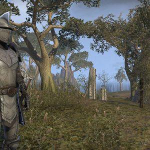 Elder Scrolls- Final Showdown